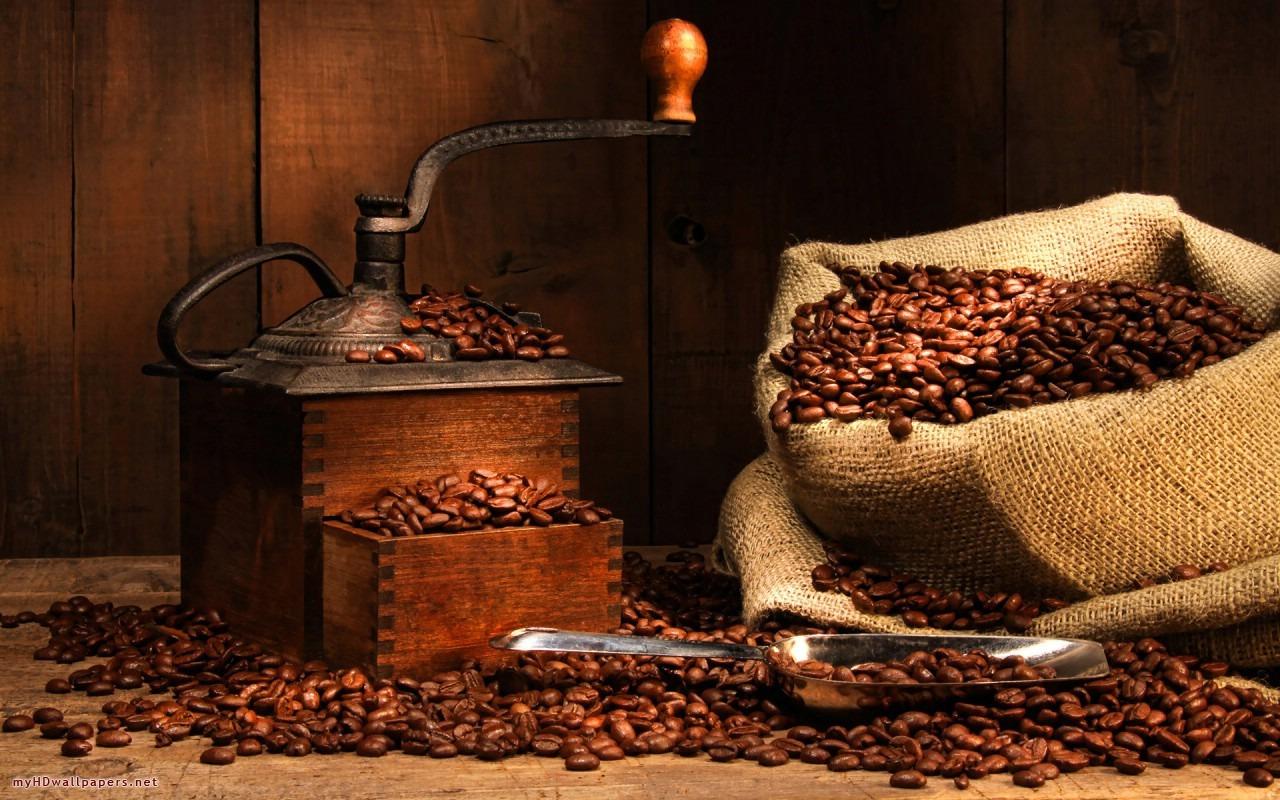 Coffee-scene-1280x800